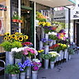 Floral Shop -- San Francisco, California