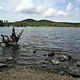 Hawley Lake -- Arizona
