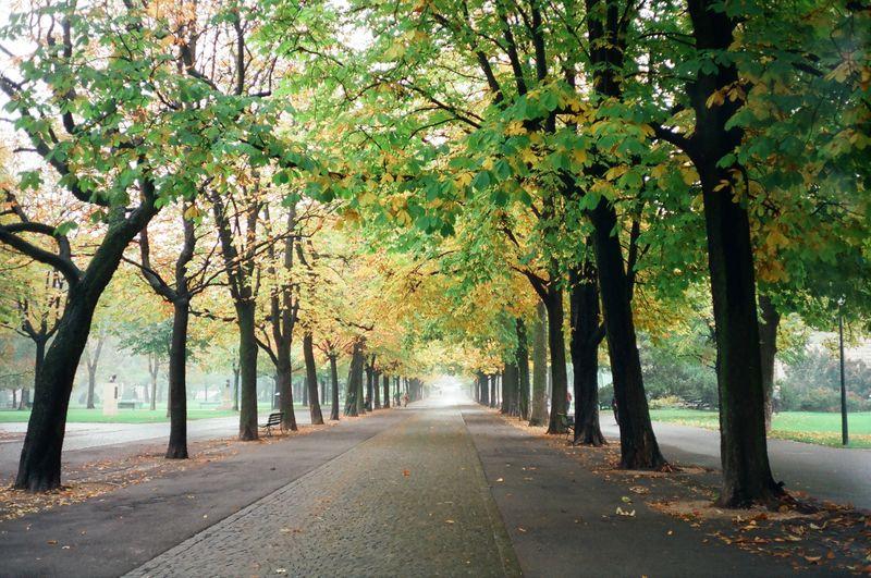 1997 Honeymoon in Genf, CH (9)