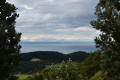 Cape Kidnappers (468)