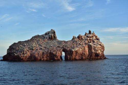 Los Islotes (77)