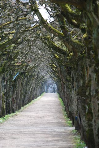 Bayreuth, DE (51)