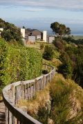 Cape Kidnappers (138)