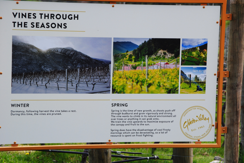 Queenstown Tour (43)