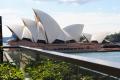 Sydney (16)