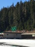 Photo safari olympic venue