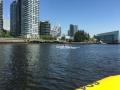 Sea Vancouver kayakers