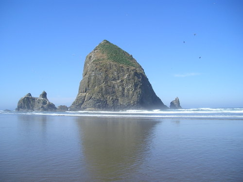 Jul_2025beach_oregon_030_2