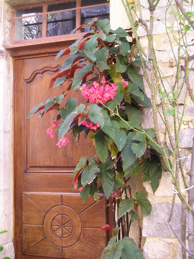 French doorway -- Seguret, France