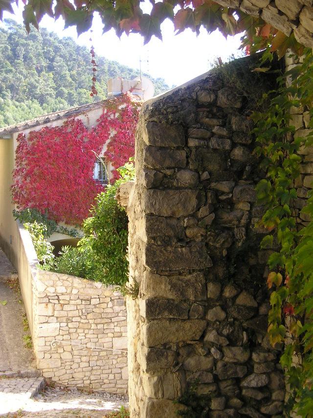 Fall colors -- Seguret, France