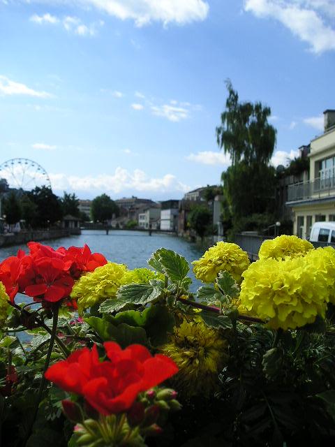 Aare River --  Thun, Switzerland